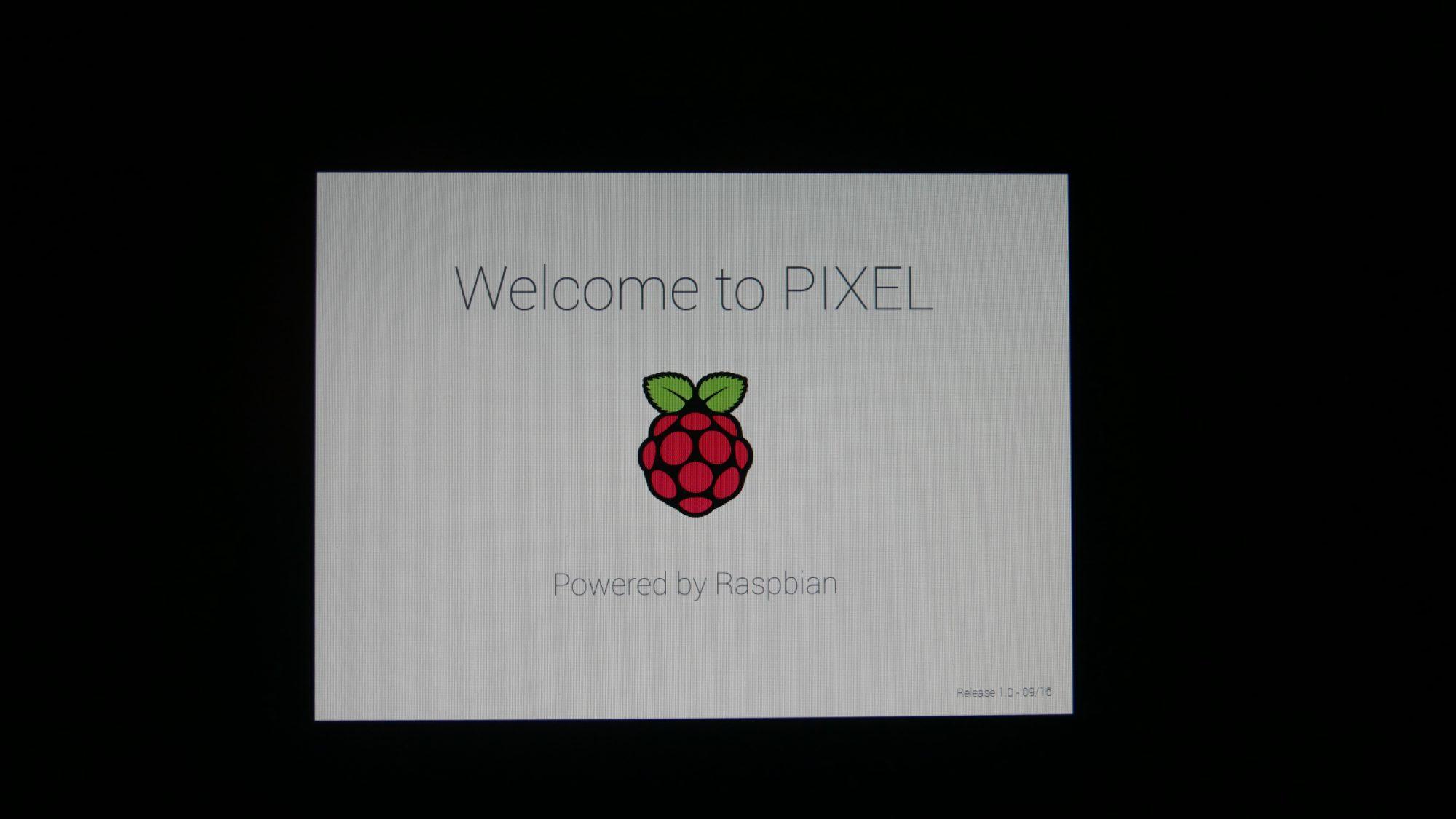 Nach circa 20 Minuten möchte Pixel uns kennenlernen.